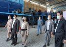 واکنش مدیرعامل کارخانه بازیافت بوکان به اتهامات شورای شهر